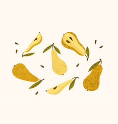 set drawn pears isolated vector image