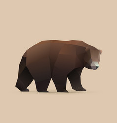 bear vector image