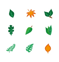 objects leaf set vector image vector image