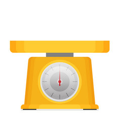 domestic weigh scales flat vector image vector image