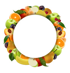 round frame of fruit on a white background vector image
