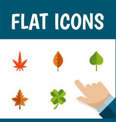 Flat icon foliage set of aspen foliage leafage vector