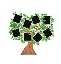 green tree with frames for your photos vector image vector image