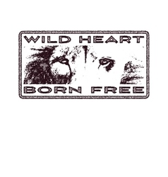 Retro design Born To Be Free for poster or t-shirt vector image