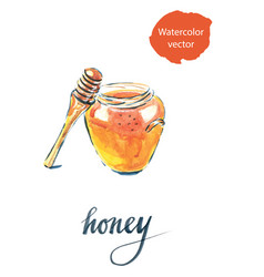 watercolor of jar with honey vector image