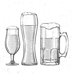 beer glasses on white vector image vector image