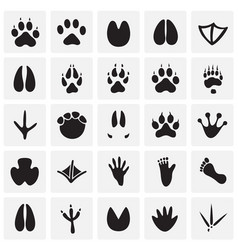 Animal foot prints icons set on squares background vector
