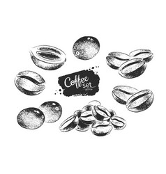 Black and white coffee beans vector