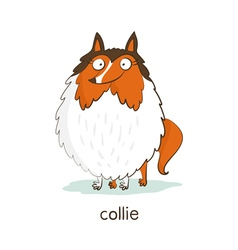 Collie dog character isolated on white vector