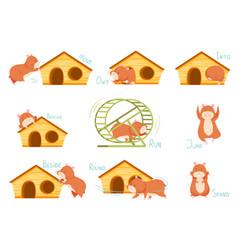 Cute hamster demonstrating english verbs vector