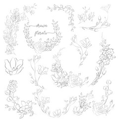 Drawn plants and flowers wreaths corners vector