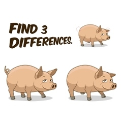 Find differences game pig vector image