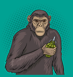 monkey with grenade pop art vector image