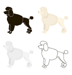Poodle icon in cartoon style for web vector