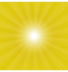sunburst back vector image