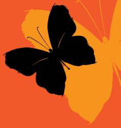 butterfly effect vector image vector image