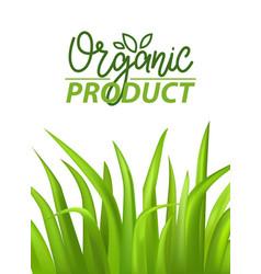 bio label with grass vegan poster herbal vector image