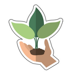 Cartoon hand holding plant leaves vector