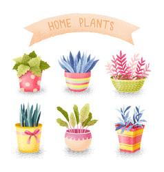 Flowers in pots set vector