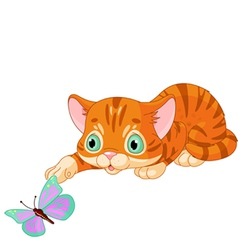 Kitten plays with the butterfly vector image