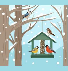 winter feeder snow woodland birds food on tree vector image
