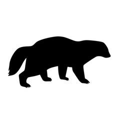 wolverine vector image