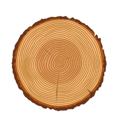 Tree trunk rings texture isolated vector image