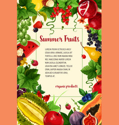 poster summer berries and tropical fruits vector image