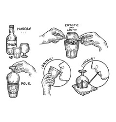 sambuca drink instructions engraving vector image