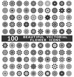 Beautiful abstract flower icons vector