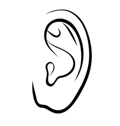 Drawing human ear outline vector
