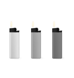 a set of gray lighters vector image