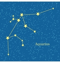 Aquarius Zodiac Sign Symbol Horoscope vector image