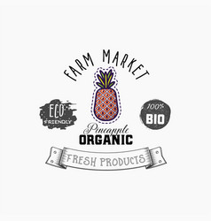 bio sticker and eco products pineapple web vector image