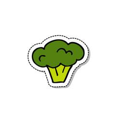 broccoli doodle icon vector image