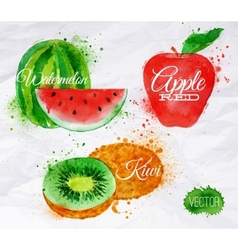 Fruit watercolor watermelon kiwi apple red vector image