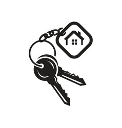 Keys with tag icon vector