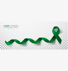 Liver cancer awareness month emerald green color vector