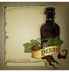 Natural herbs vector