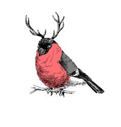 bullfinch with deer horns vector image
