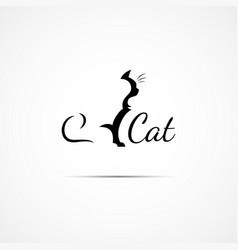 cat logo vector image