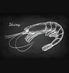 chalk sketch of shrimp vector image