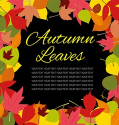 autumn leaves template vector image