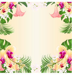 Floral frame background witht ropical flowers vector
