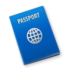 international passport vector image