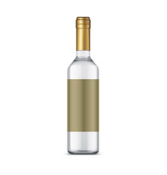 isolated bottle vodka with empty label vector image
