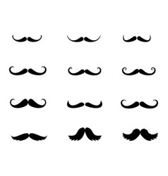 Set of moustaches vector
