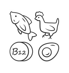 Vitamin b12 linear icon fish poultry and egg vector