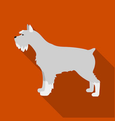 schnauzer icon in flat style for web vector image vector image