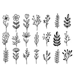 0192 hand drawn flowers doodle vector